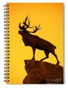 130918p143 Spiral Notebook