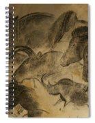131018p051 Spiral Notebook