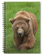 131018p213 Spiral Notebook