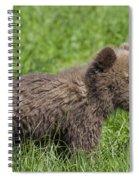131018p227 Spiral Notebook