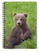 131018p247 Spiral Notebook