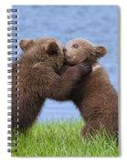 131018p256 Spiral Notebook