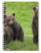 131018p260 Spiral Notebook