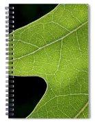 131114p195 Spiral Notebook