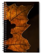 131114p318 Spiral Notebook