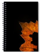 131114p321 Spiral Notebook