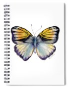 14 Pieridae Butterfly Spiral Notebook