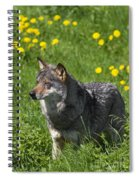 140314p087 Spiral Notebook