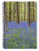 140420p006 Spiral Notebook
