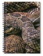 140420p282 Spiral Notebook