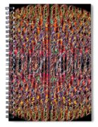 1458 Abstract Thought Spiral Notebook