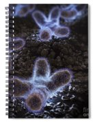 Human Chromosomes Spiral Notebook