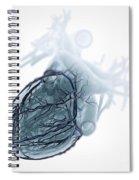 Coronary Blood Supply Spiral Notebook