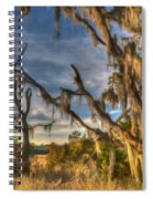 Winter Marsh Spiral Notebook