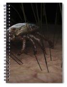 Tick Ixodes Spiral Notebook