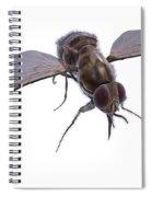 Tsetse Fly Spiral Notebook