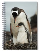 Gentoo Penguin With Young Spiral Notebook