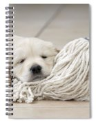 Golden Retriever Puppy Spiral Notebook