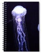 1806 Spiral Notebook