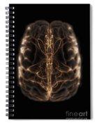 Brain With Blood Supply Spiral Notebook
