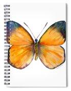 19 Delias Anuna Butterfly Spiral Notebook