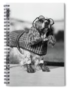 1930s Cocker Spaniel Wearing Glasses Spiral Notebook