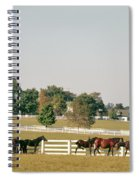 1990s Small Group Of Horses Spiral Notebook