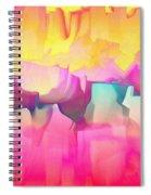 1998027 Spiral Notebook