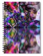 1998035 Spiral Notebook