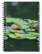 A Day At The Lily Pond Spiral Notebook