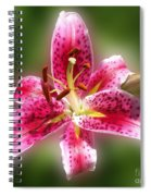 A Lilly For You Spiral Notebook