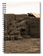 A Needle In A Haystack Spiral Notebook