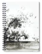 Modern Abstract Black Ink Art Spiral Notebook