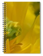 Abstract Parrot Tulip Spiral Notebook
