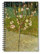 Almond Tree In Blossom Spiral Notebook