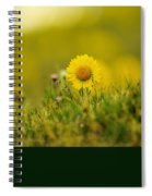 Alpine Flowers Spiral Notebook