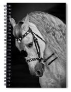 Andalusian Spiral Notebook