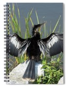 Anhinga  Spiral Notebook