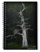 Anthropomorphic Tree Spiral Notebook