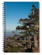 Appalachian Mountains From Mount Mitchell  Spiral Notebook