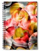 Apple Bowl Spiral Notebook