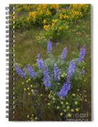 Arrowleaf Balsamroot And Lupine Spiral Notebook