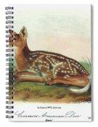 Audubon Deer Spiral Notebook