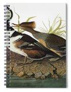 Audubon Merganser Spiral Notebook