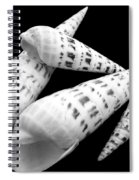 Augers Spiral Notebook