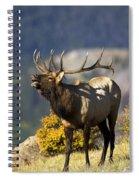 Autumn Bull Elk Bugling Spiral Notebook