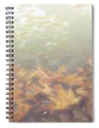 Autumn Leaves Floating In The Fog Spiral Notebook