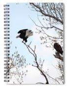 Bald Eagles Spiral Notebook