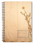 Beautiful Dried Vintage Flowers Spiral Notebook