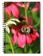 Bee Nice Spiral Notebook